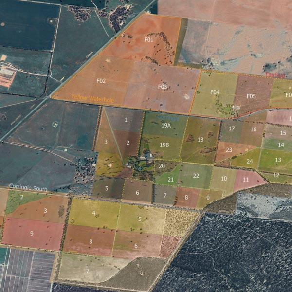 Drone farm mapping services - Barmah